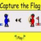 Capture The Flag  Icon